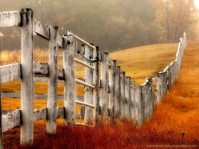 country-farm-fence-wallpaper
