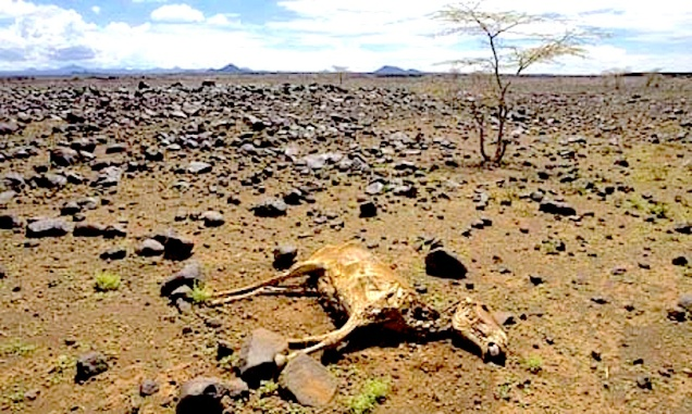 kalacha-marsabit-district-001.jpg